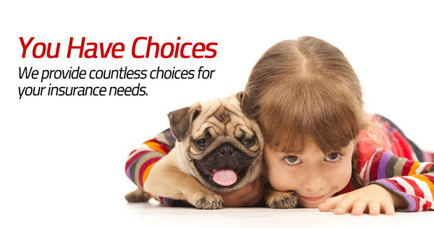 You Have Choices - We Provide Countless Choices For Your Insurance Needs